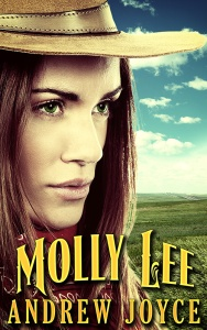 Molly-Lee-800 Cover reveal and Promotional (1)